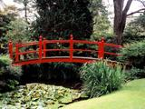 Wallpaperi Th_33971_Japanese_Garden3_County_Kildare4_Ireland_122_371lo